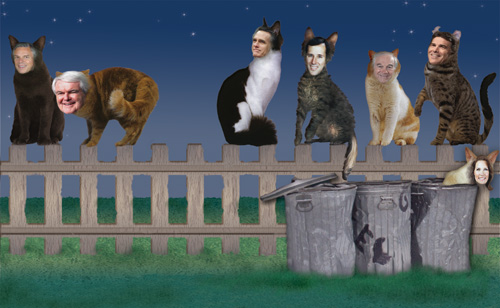 The six remaining political cats are sitting on a fence