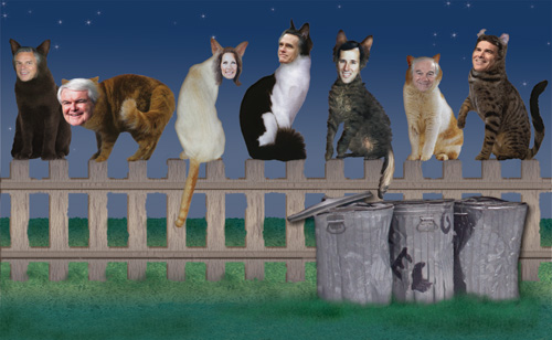 Seven political cats are sitting on a fence
