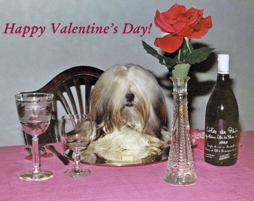 A pampered furry dog is sitting at an elegant dinner table with wine and roses